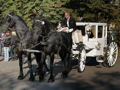 Свадебная карета попала в ДТП