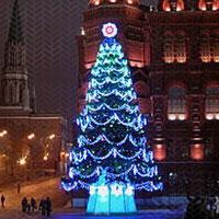 Выбрана главная новогодняя елка России